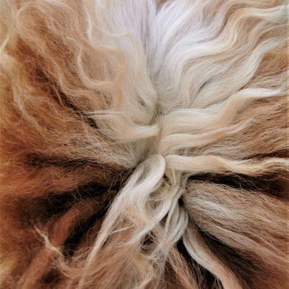 alpaca tail